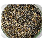 Sementes Crotal�ria Juncea - Caixa com 3,0 kg